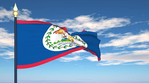 Flag Of Belize Stock Video Footage