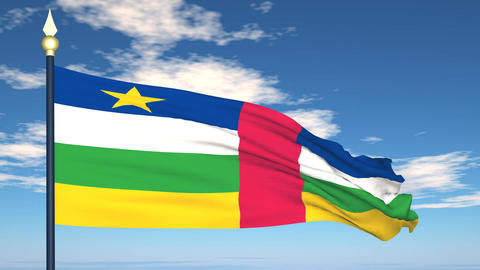 Flag Of Central African Stock Video Footage