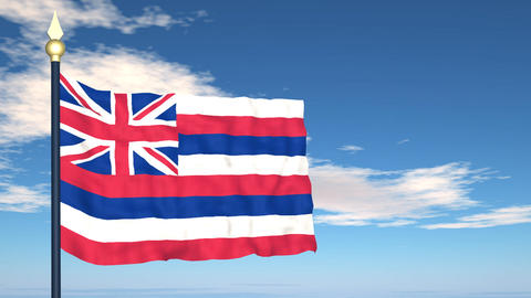 Flag of the state of Hawaii USA Stock Video Footage