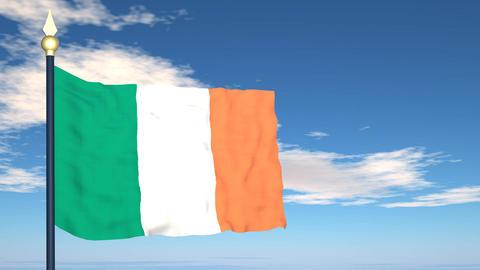 Flag Of Ireland Stock Video Footage