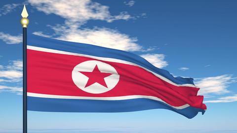 Flag Of North Korea Stock Video Footage
