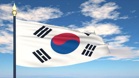Flag Of Korea Stock Video Footage