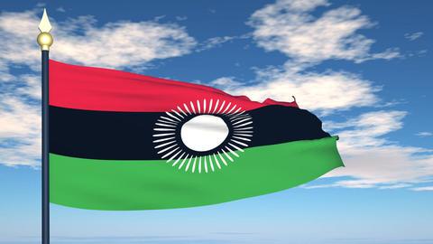 Flag Of Malawi Animation