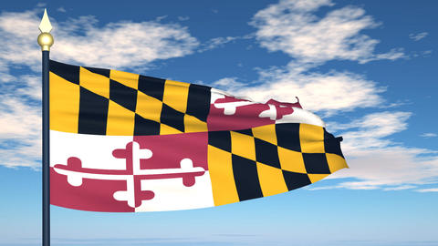 Flag of the state of Maryland USA Stock Video Footage