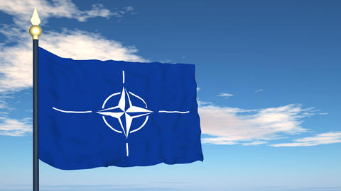 Flag Of NATO Stock Video Footage