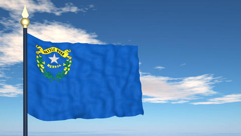 Flag of the state of Nevada USA Stock Video Footage