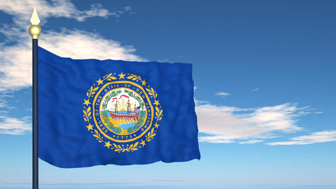 Flag of the state of New Hampshire USA Stock Video Footage