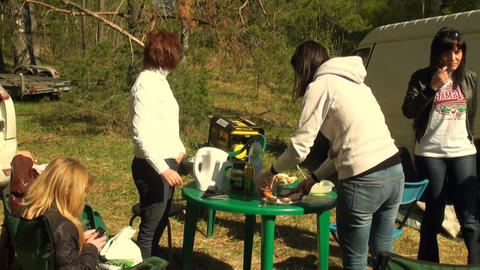 Picnic on the nature Footage