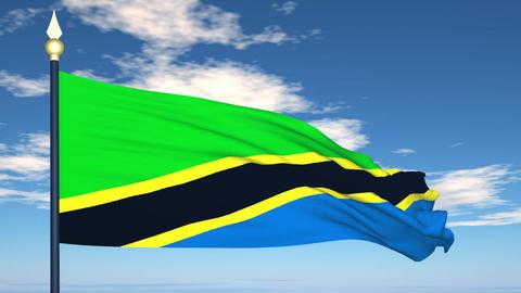 Flag Of Tanzania Stock Video Footage