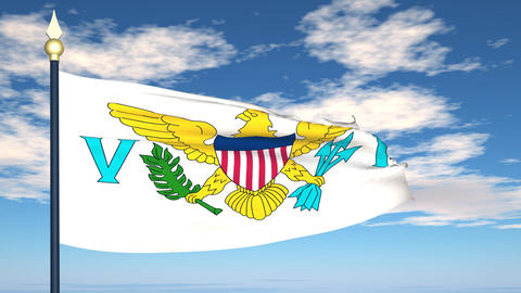 Flag Of United States Virgin Islands Stock Video Footage