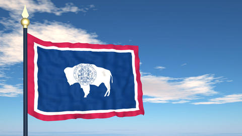 Flag of the state of Wyoming USA Stock Video Footage