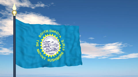 Flag of the state of South Dakota USA Stock Video Footage