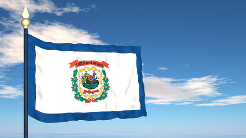 Flag of the state of West Virginia USA Stock Video Footage