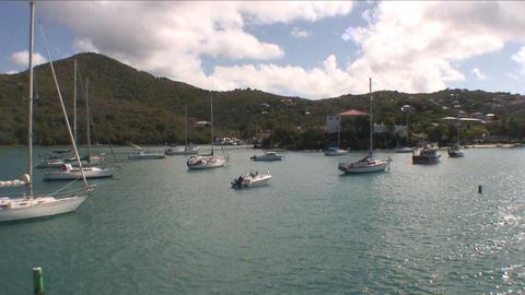 Sailboats moored off the coast of a green island Footage