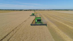 Combine harvester on wheat field Footage