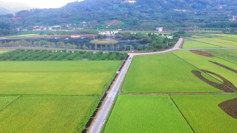 Aerial View of Dongjeongho Lake in Akyang Rice Paddy Field, Hadong, Live Action