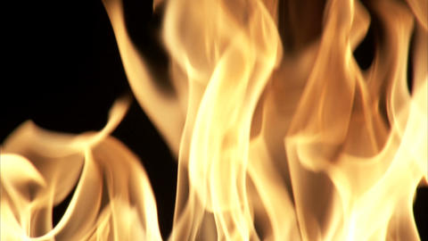 Close up of flames flickering with a black background Live Action