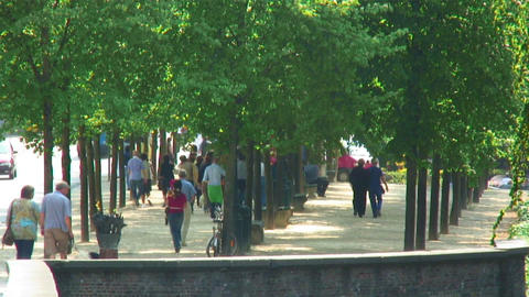 Tree-lined walkways in a European city Footage