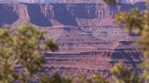 Desert canyon landscape with plants in the foreground Footage