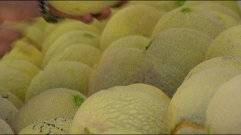 Close up of hands sorting through cantaloupes Footage