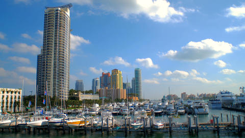 Time-lapse of a harbor in Miami, Florida Live Action