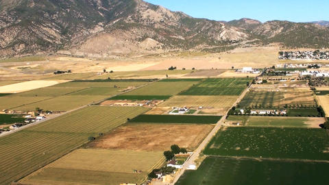 Aerial shot of Nephi yellow fields and crops Footage