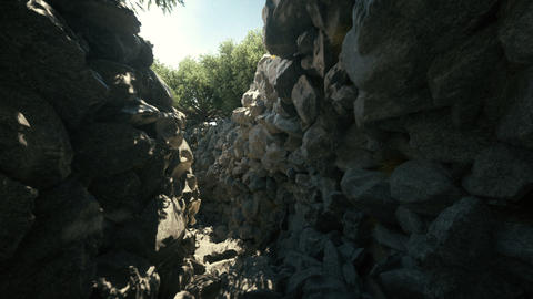 Camera exploring a 3d rocky passage with trees beautiful... Stock Video Footage