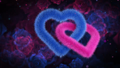 Union of gender hearts, blue pink on color rose bg 애니메이션