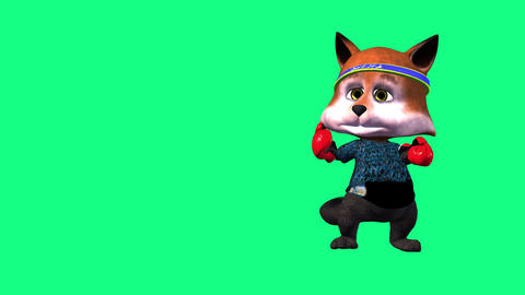 animated 3d cartoon foxy with boxing gloves on green background Animación