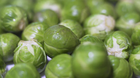 Brussel Sprouts Stock Video Footage