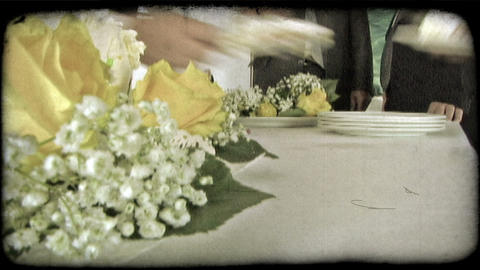 Plate Loading 3. Vintage stylized video clip Live Action