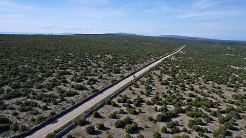 Aerial - Fying over a long, straight road, cutting through green landscape Live Action