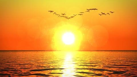Flock of geese flying above ocean towards sunset CG動画素材