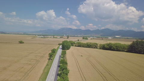 Aerial view of blue car on road in wheat field in summer countryside 영상물