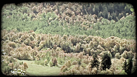Beautiful mountain valley. Vintage stylized video clip Footage