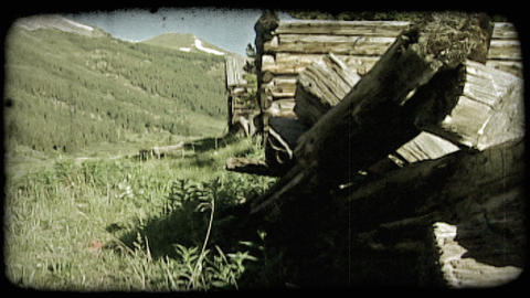 Mountain logs and valley. Vintage stylized video clip ライブ動画