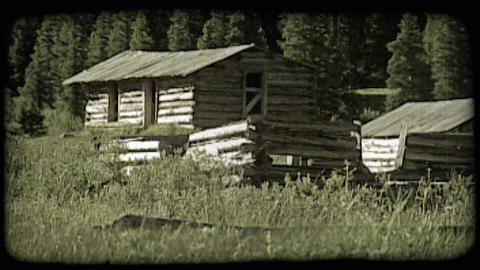 Log cabin in forest. Vintage stylized video clip Live Action