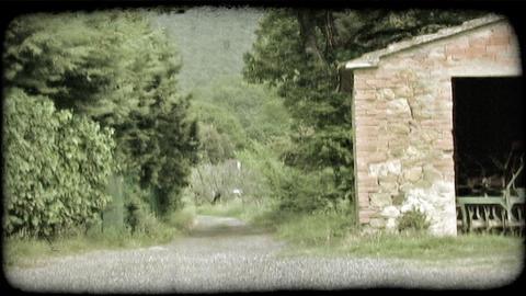 Gravel Path 2. Vintage stylized video clip Live Action