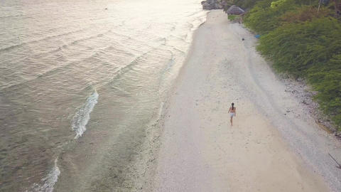 Aerial view coastline and sea wave on beach where walking young girl on tropical ビデオ
