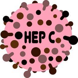 Hepatitic C virus vector illustration Vector