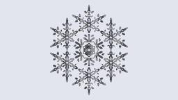 3D Snowflake Modelo 3D