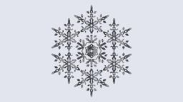 3D Snowflake 3D