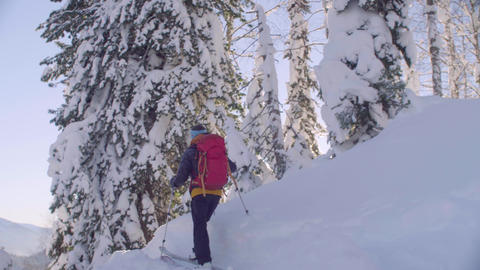 Skitour in Siberia. A man climbing up the hill in a snowy forest Live Action