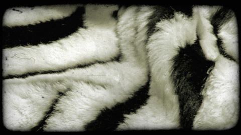Panning shot of a furry fabric. Vintage stylized video clip Stock Video Footage