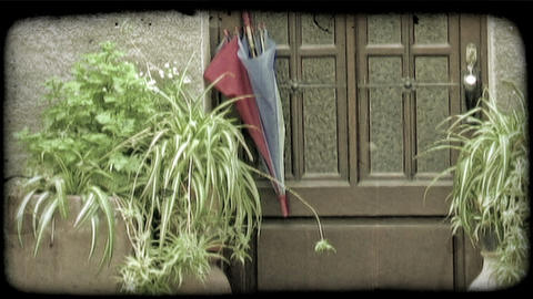 A shot of a doorway with some potted plants and an umbrella in Italy. Vintage st Footage