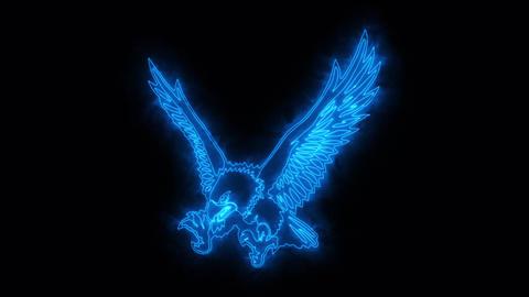 Blue Burning Eagle Animated Logo Loopable Graphic Element Animation