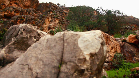 Stock Footage of rocky, yet green mountainside in Israel Footage