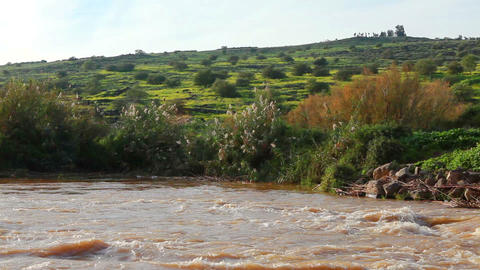 Stock Footage of the River Jordan and the vegetation on its banks in Israel Footage
