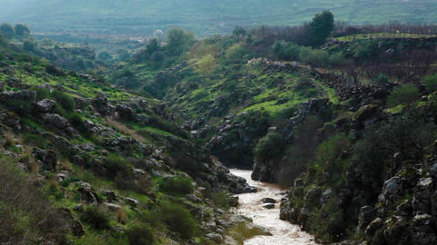 Stock Footage of a river flowing through a green and rocky gorge in Israel Footage