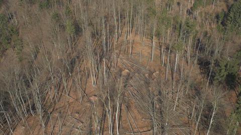 Aerial - Natural disaster caused by sleet storm Footage